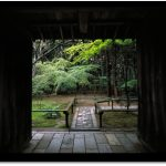 Japanese Gardens - Under the Gardener's Eye ...