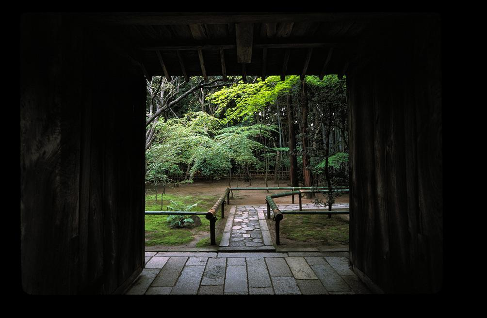 Daitoku-ji-Koto. Kyoto. © Anne-Elizabeth Cabée / Robert Lavayssière.